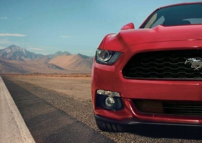 Mustang Discover Exterior Grill